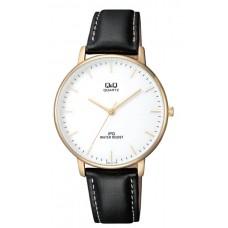 Часы Q&Q QZ00J101Y (66079)
